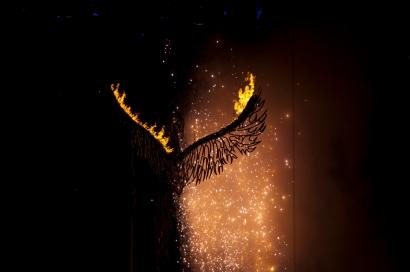 the_phoenix_rises